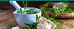Botanical Medicine - Exeter NH